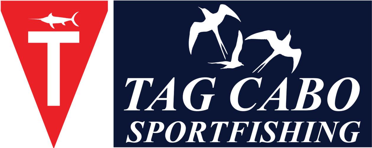 Cabo Fishing & luxury Yacht Charters