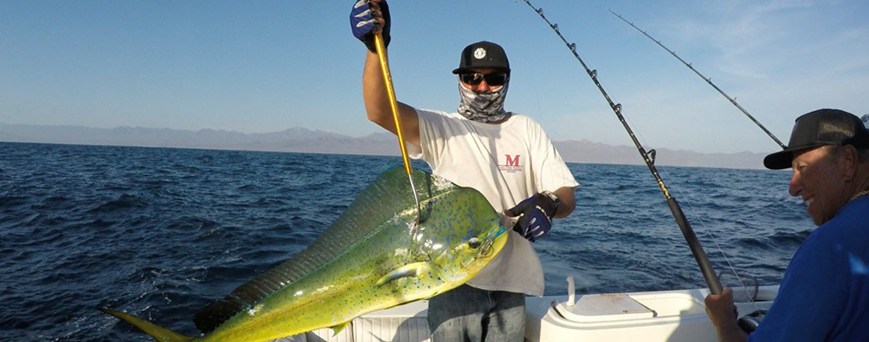 Enjoy Sports Fishing and Other Water Based Activities in Cabo